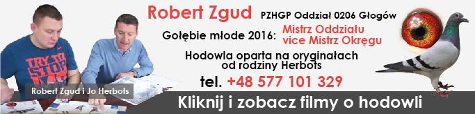 Robert Zgud - hodowca gołębi pocztowych, PZHGP Oddział 0206 Głogów